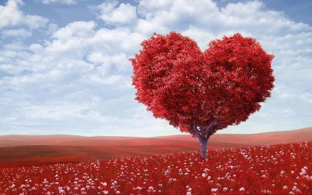 Fókuszban a kardiovaszkuláris kockázat csökkentése